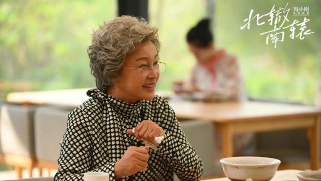 劉曉慶的奶奶白演了!《北轍南轅》大結局,劇裡劇外都不受人待見